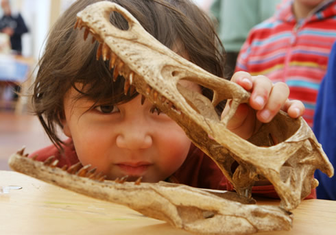 Visit the Marine Parade Lyme Regis Fossil Festival on Friday 29 April to Sunday 1 May 2011