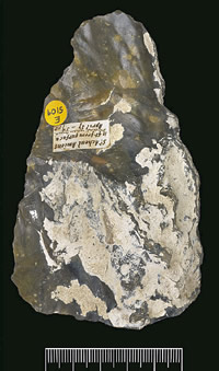Flint hand axe uncovered in 1859 that helped reveal the very ancient age of humankind.