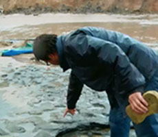 Dr Nick Ashton of the British Museum examines the footprints on the rain-soaked site at Happisburgh