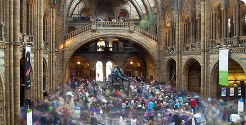 A busy Hintze Hall