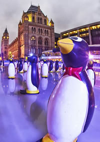 Penguin stabilisers help young skaters at the Natural History Museum ice rink