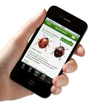 The first app from the Natural History Museum is for the OPAL Bugs Count survey