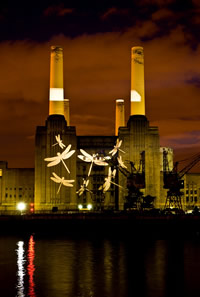 Giant dragonflies on Battersea Power Station. Look out for dragonfly larvae in the water survey