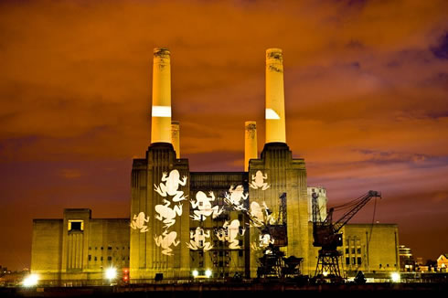 Giant images of  frogs projected onto Battersea Power Station for the launch of OPAL Water Survey