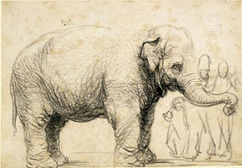 Rembrandt painting of Hansken the elephant