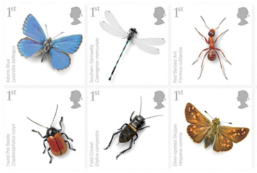 Six of the 10 first class Royal Mail stamps of endangered UK insects developed with the Museum