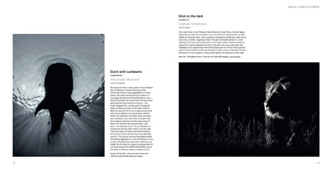 Pages from Wildlife Photographer of the Year Portfolio 23