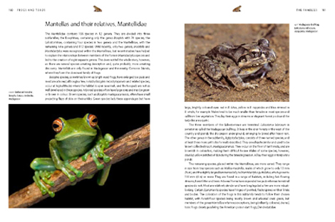 Pages from Frogs and Toads