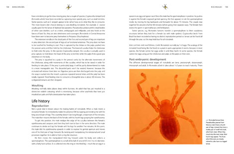 Pages from Arachnids