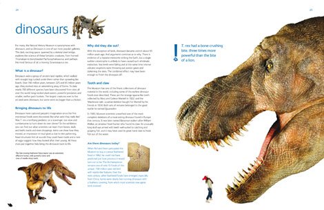 Pages from the Museum Souvenir Guide