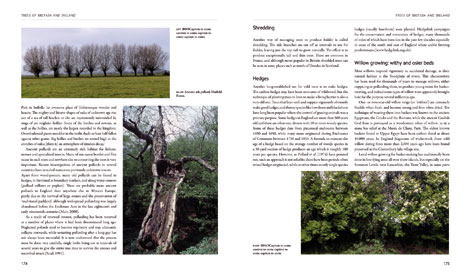Trees of Britain and Ireland pages