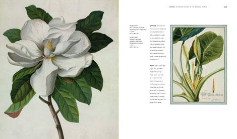Pages from Art of Nature