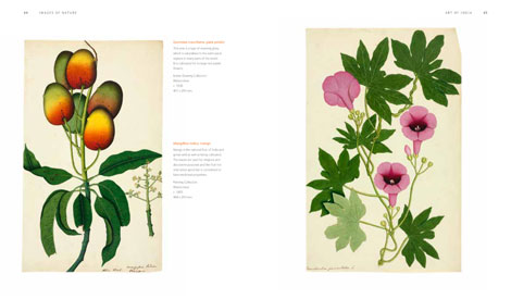 Pages from The Art of India