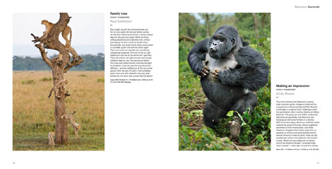 Pages from Wildlife Photographer of the Year Portfolio 21