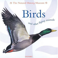 Animal Close-ups: Birds and Other Flying Animals cover