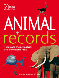 Animal Records cover