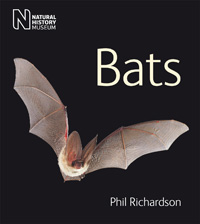 Front cover of Bats by Phil Richardson