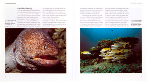 Pages from Coral Fish