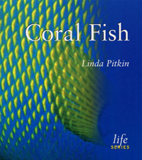Coral Fish cover