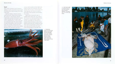 Pages from Deep Ocean