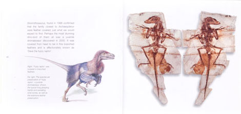 Pages from Dino-birds