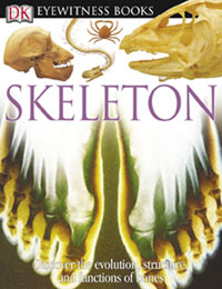 Eyewitness: Skeleton cover