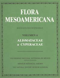 Flora Mesoamericana Volume Six cover