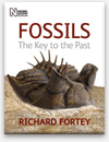 Fossils - The Key to the Past book