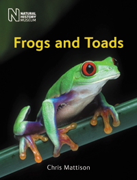 Frogs and Toads cover