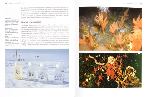 Pages from Frozen Oceans