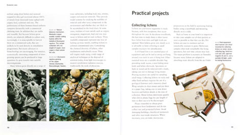 Pages from Lichens