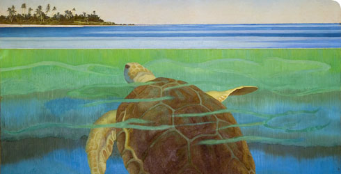 Marine turtle oil painting (c. 1955) by Audrey Weber