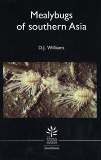 The Mealybugs of Southern Asia cover