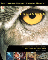 Natural History Museum Book of Predators cover