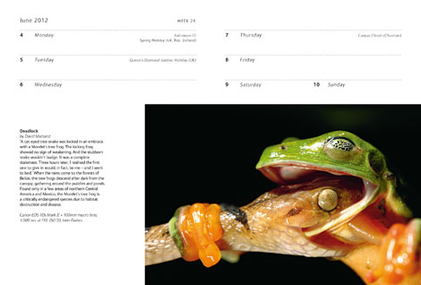 Pages from Wildlife Photographer of the Year Diary 2012