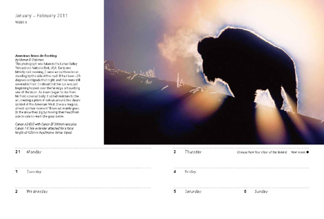 Pages from Wildlife Photographer of the Year Diary 2011