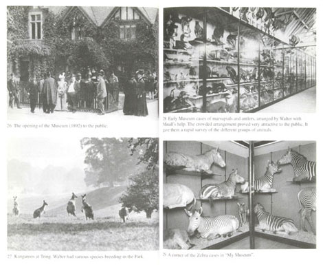 Pages from Walter Rothschild: The Man, the Museum and the Menagerie