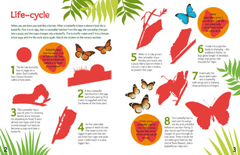 Pages from Sensational Butterflies Sticker Book