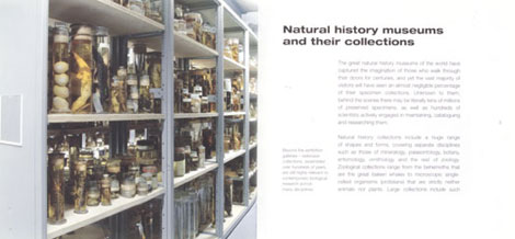 Pages from Specimens
