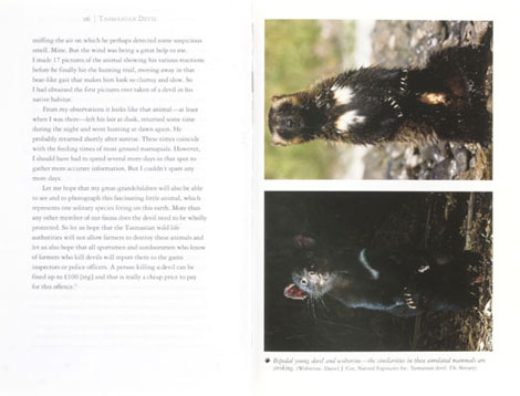 Pages from Tasmanian Devil