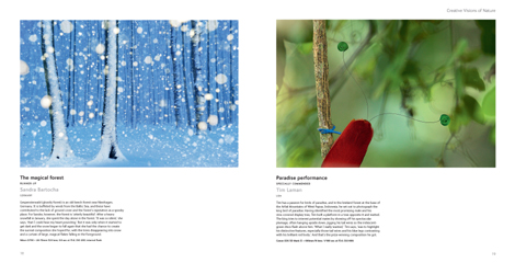 Pages from Wildlife Photographer of the Year Portfolio 20.