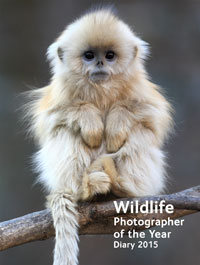 Wildlife Photographer of the Year Pocket Diary 2014 cover