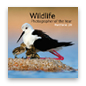 Wildlife Photographer of the Year Portfolio 20 cover image