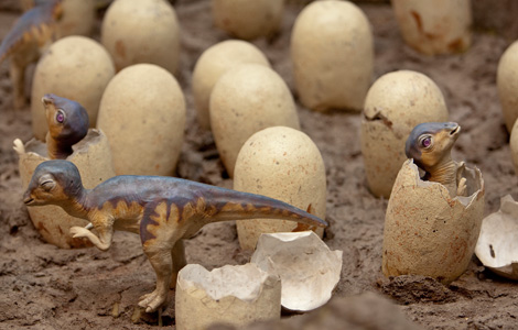 Dinosaur babies hatching from eggs