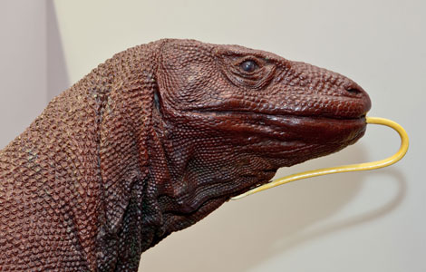 Komodo dragon model from Myths and Monsters touring exhibition