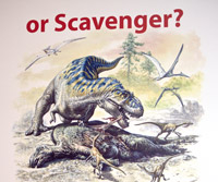 Was T.rex a predator or scavenger?