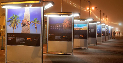 The all-weather exhibition panels look stunning at night time