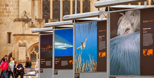 The all-weather Wild Planet image display units make an impact in the Abbey Church Yard, Bath.