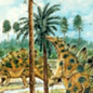 Co evolution