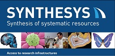 synthesys provides unique research opportunities